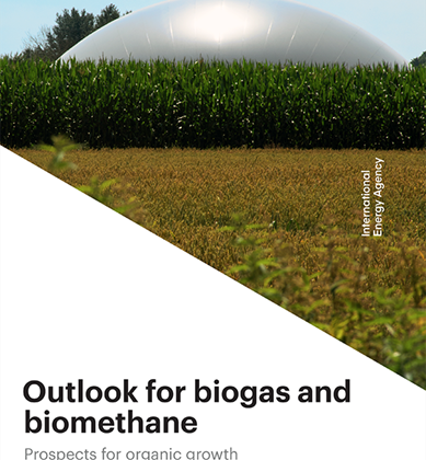 Outlook for Biogas and Biomethane: Prospects for Organic Growth (International Energy Agency, March 2020)