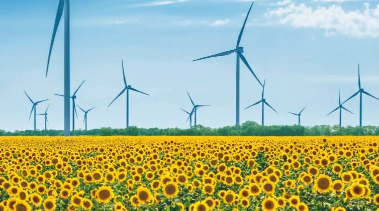 Wind Power Sector of Ukraine: Market Overview 2019 (UWEA, 2020)